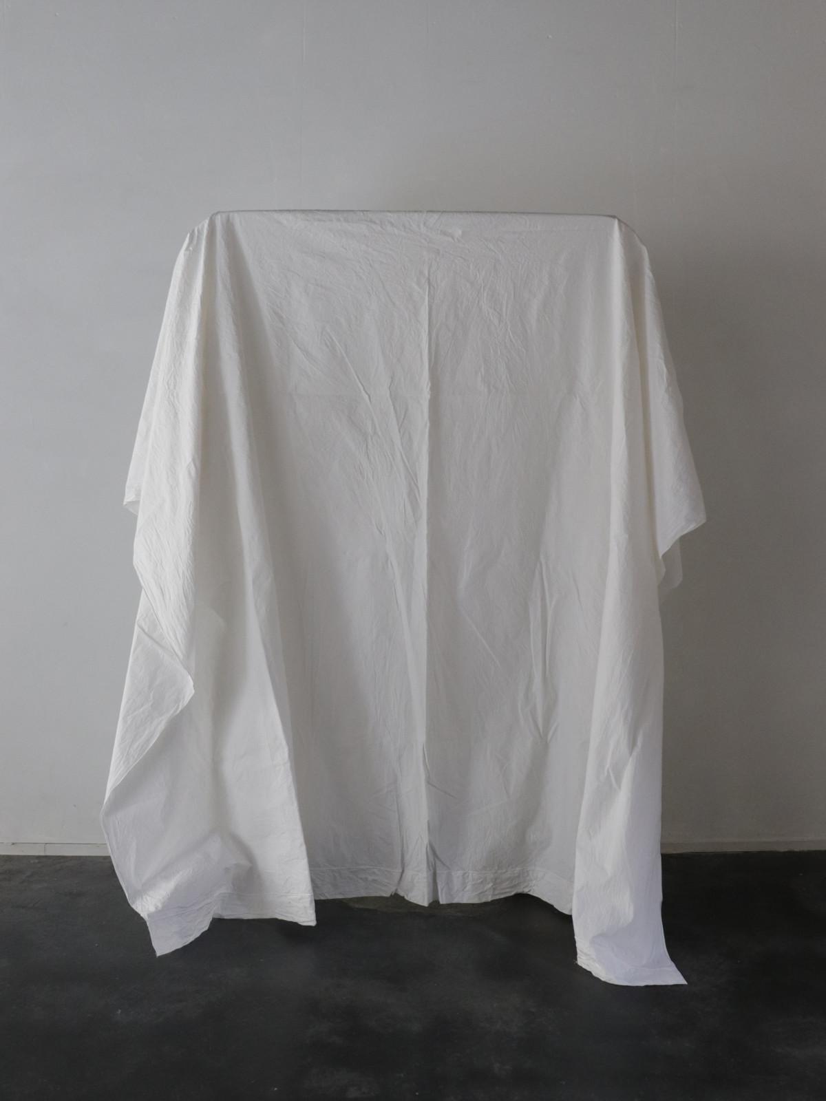 dead stock cotton fabric, france, sheet